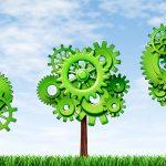 Transformación digital empresarial y medio ambiente